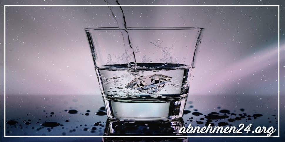 Abnehmfalle 1 Wasser