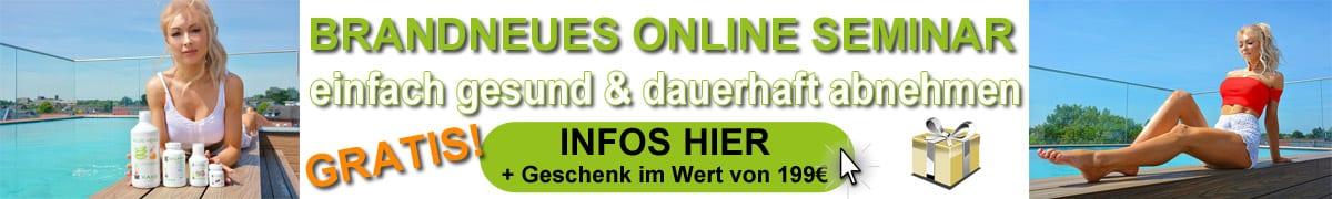 HC Online Seminar